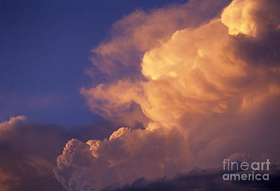 Photograph - Cumulus Congestus by Jim Corwin