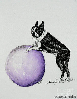 Watercolor Pet Portraits Drawing - Claimed by Susan Herber