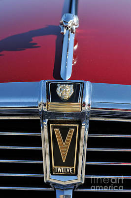 Jaguar Photograph - Classic Jaguar V Twelve Xj 5.3c Badge  by George Atsametakis