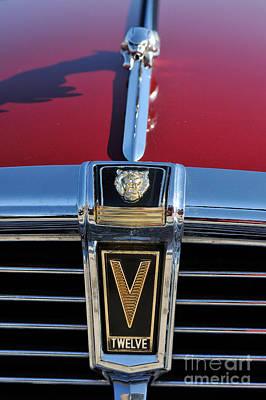 Mascot Photograph - Classic Jaguar V Twelve Xj 5.3c Badge  by George Atsametakis