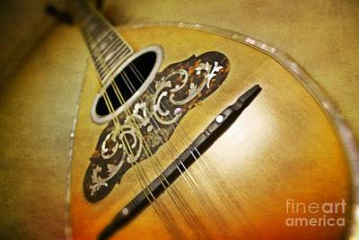 Photograph - Classic Mandolin by Paul Cammarata