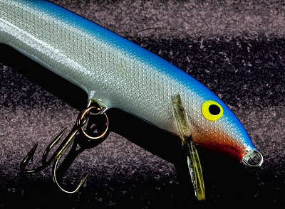 Photograph - Classic Rapala by John Crothers