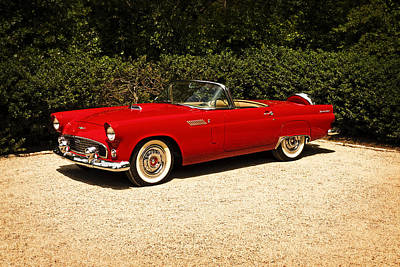 Photograph - Classic T-bird by Frank Winters