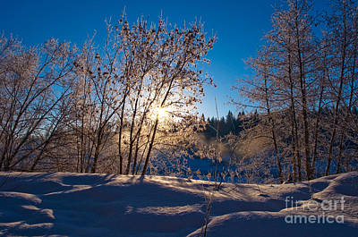 Photograph - Classic Winters Day by Terry Elniski
