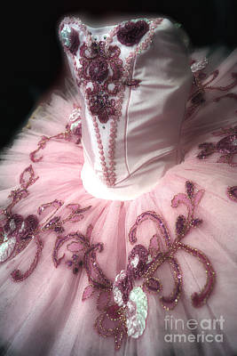 Dance Ballet Roses Photograph - Classically Costumed X by Cassandra Buckley