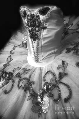 Dance Ballet Roses Photograph - Classically Costumed X Monochrome by Cassandra Buckley