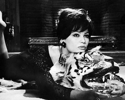 Pink Panther Photograph - Claudia Cardinale In The Pink Panther  by Silver Screen