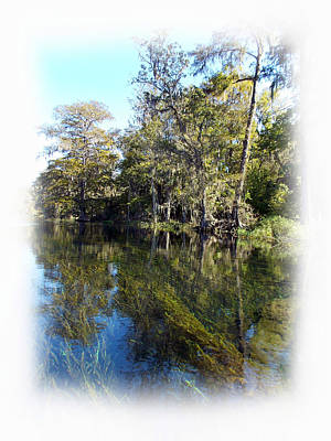 Photograph - Clear Blue Silver River  by Sheri McLeroy