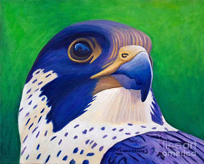 Falcon Painting - Clear Light by Brian  Commerford