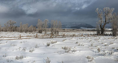 Clearing Storm In The Tetons Art Print by Sandra Bronstein