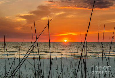 Clearwater Sunset 2 Art Print