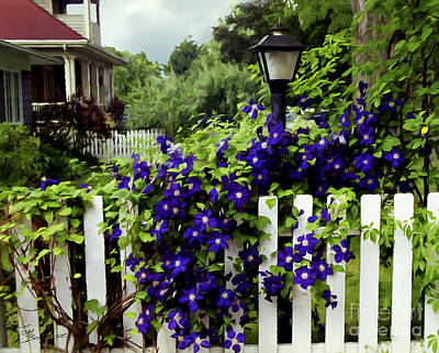 Photograph - Clematis On White Picket Fence Painting Effect by Tom Brickhouse