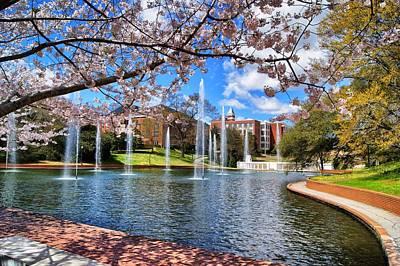 Clemson Wall Art - Photograph - Clemson University Springtime by Richie Knight