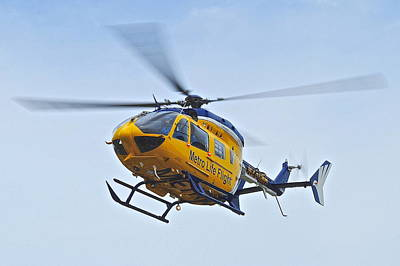 Cleveland Metro Life Flight Art Print by Frozen in Time Fine Art Photography