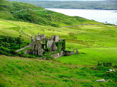 Photograph - Clifden Castle by Denise Mazzocco