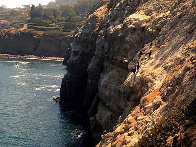 Venice Beach Bungalow - Cliff at La Jolla Beach by Josephine W