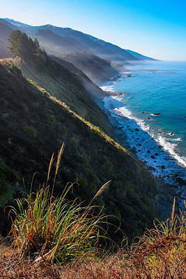 Cliff Grass At Big Sur Art Print by Adam Pender