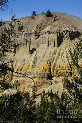 Photograph - Cliff Of Yellowstone's Grand Canyon by Jennifer White