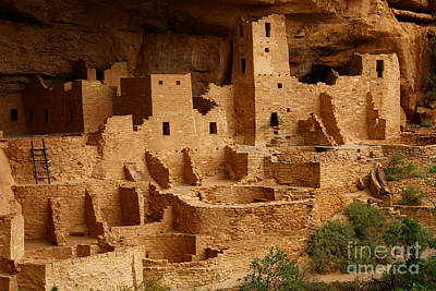 Cliff Palace Art Print