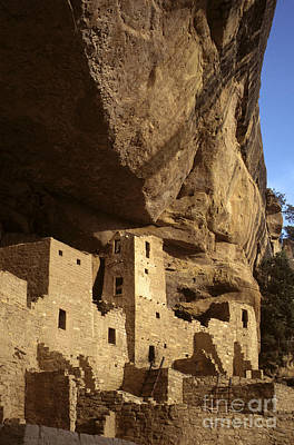Photograph - Cliff Palace Mesa Verde Np by Craig Lovell