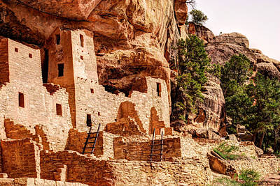 Cliff Palace Tower And Mesa Verde - National Park - Colorado Art Print