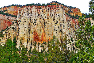 Cliffs Near Checkerboard Mesa Along Zion-mount Carmel Highway In Zion National Park-utah Art Print