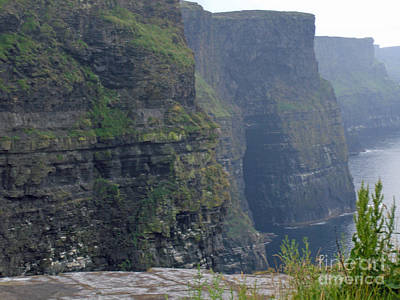 Photograph - Cliffs Of Moher by Brenda Brown