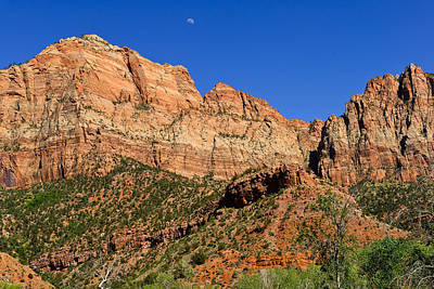 Photograph - Cliffs Of Zion by Greg Norrell