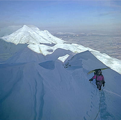 Photograph - T-501301-d-climber On West Buttress Mt Mckinley   by Ed  Cooper Photography