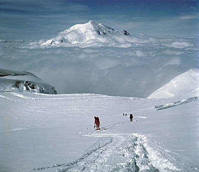Photograph - T-501315-climbers And Mt. Foraker  by Ed  Cooper Photography