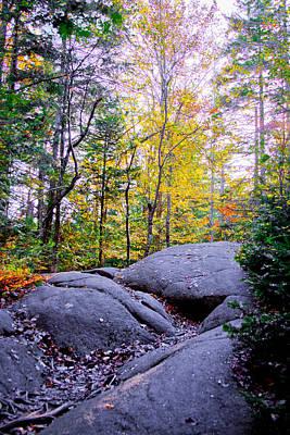 Photograph - Climbing Bald Mountain II by David Patterson