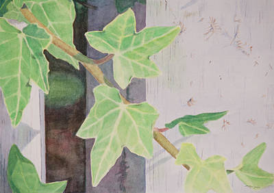 Watercolor Painting - Climbing Ivy by Christopher Reid
