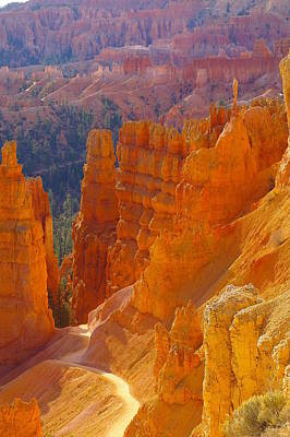 climbing out of the Canyon Art Print by Jeff Swan