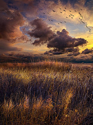 Close Behind Art Print by Phil Koch