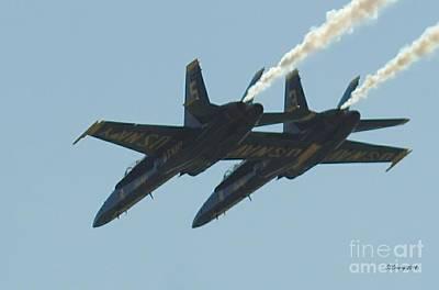 Photograph - Close Flight by Susan Stevens Crosby