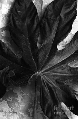 Photograph - Close by Randi Grace Nilsberg