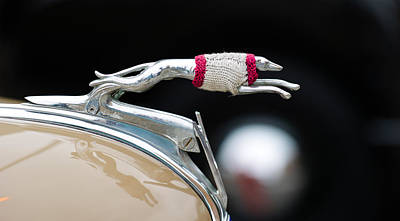 Greyhound Photograph - Close-up Of A Hood Ornament Of Fords by Panoramic Images