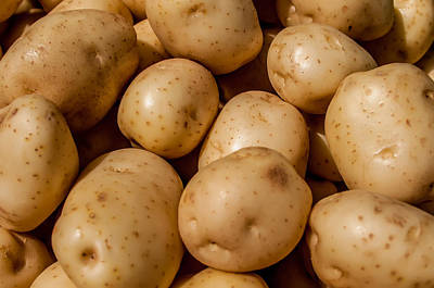 Photograph - Close Up Of Big White Potatoes On Market Stand by Alex Grichenko