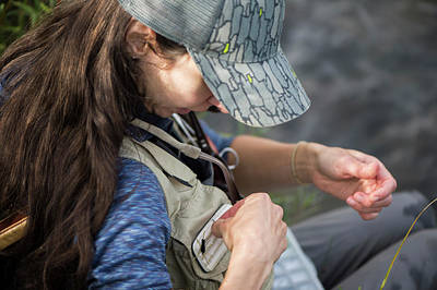Colorado Fly Fishing River Wall Art - Photograph - Close-up Of Female Angler Checking by Jennifer Magnuson