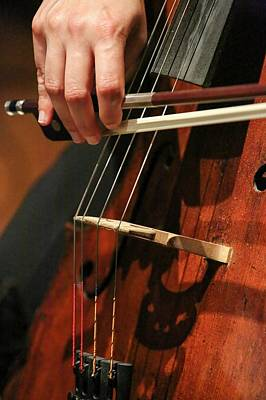 Cellist Photograph - Close Up Of The Cellist's Hands by Photostock-israel