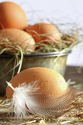 Photograph - Closeup Of Brown Eggs With Straw  by Sandra Cunningham