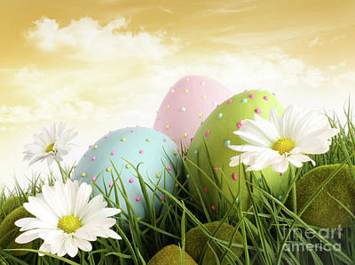 Photograph - Closeup Of Decorated Easter Eggs In The Grass With Flowers by Sandra Cunningham