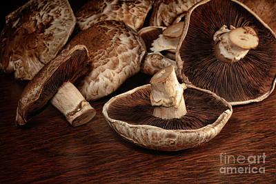 Closeup Of Fresh Portobello Mushrooms Art Print