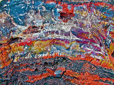 Closeup Of Petrified Wood In Crystal Forest In  Petrified Forest National Park- Arizona  Original