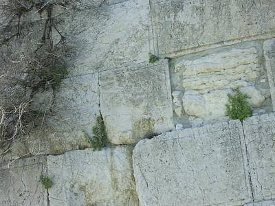 Photograph - Closeup Of The Wailing Wall by Esther Newman-Cohen