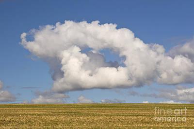 Cloud Art Print by David Davies