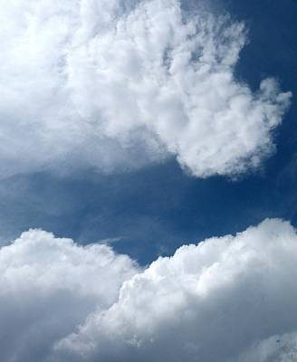 Rhinoceros Photograph - Cloud Nine 14 by Will Borden