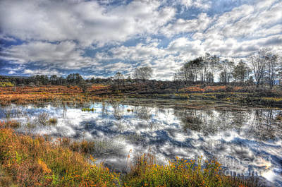 Cloud Reflections In Beaver Pond Canaan Valley Art Print by Dan Friend