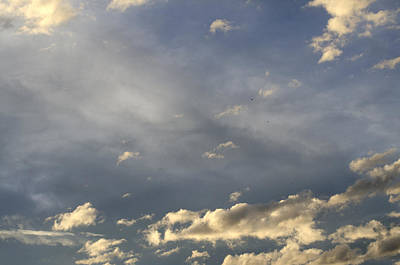 Photograph - Cloud Series 37 by Teri Schuster