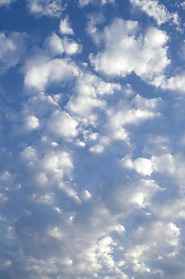 Photograph - Cloud Series 7 by Teri Schuster